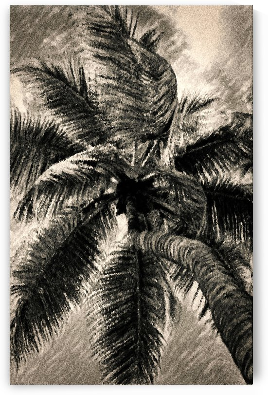 Palm Gray by George Bloise