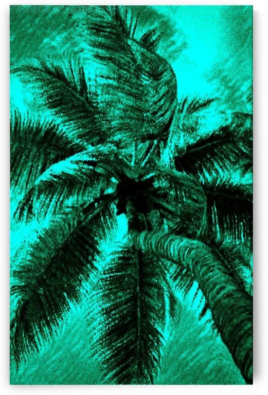 Palm Agua by George Bloise