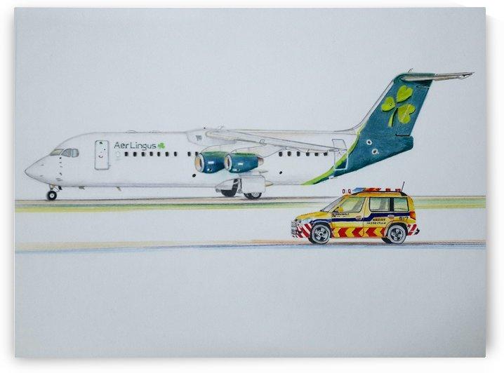Aer Lingus- Avro RJ85 by Pramod Sharma
