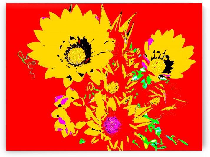 Rainbow Flower - Red by Lexa Harpell