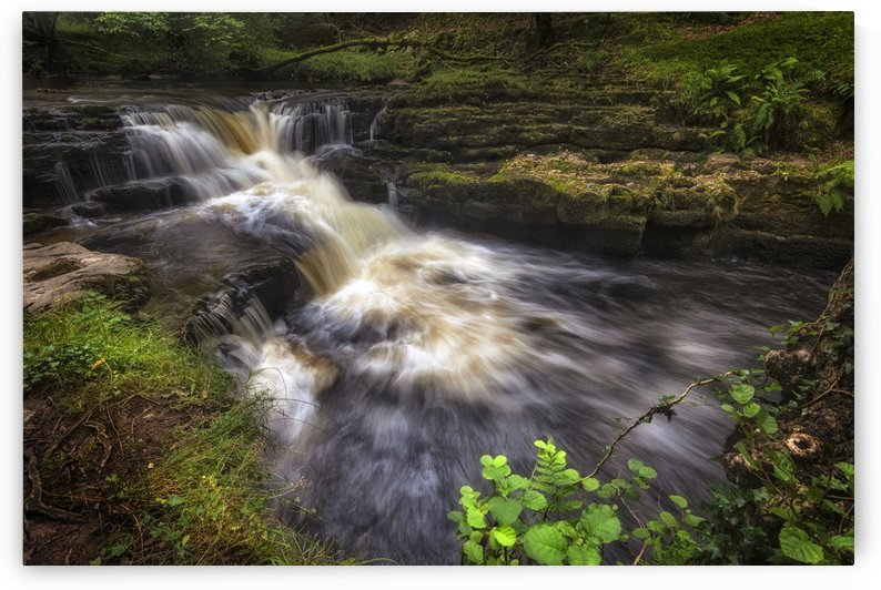 River Neath in Waterfall Country by Leighton Collins
