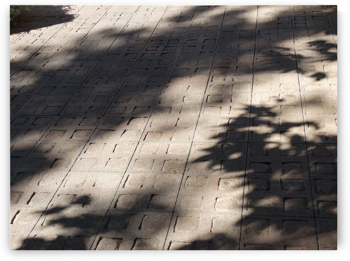Shaded Courtyard by Emerson