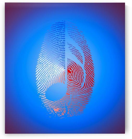 Musical Fingerprint by Bruce Rolff