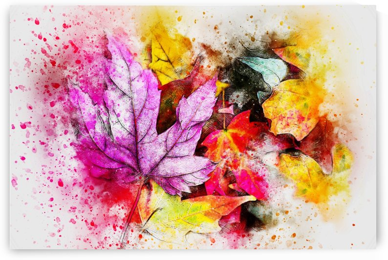 AUTUMN LEAVES SPLASH OUT by George Bloise