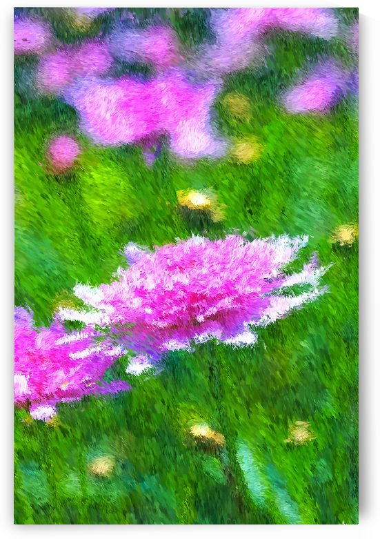 Off The Garden Path  by Joy Watson