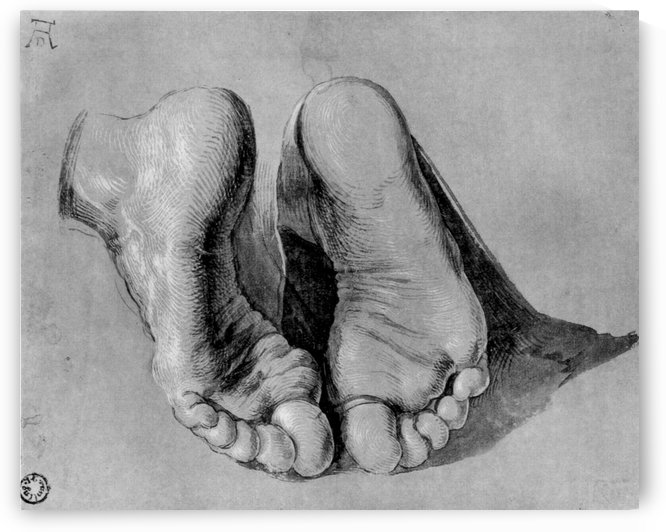 Feet of an apostle by Albrecht Durer