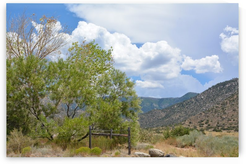 New Mexico Landscape Photograph by Katherine Lindsey Photography