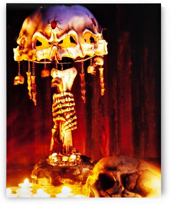 Skull Lamp From The Pitt by David B Martin II