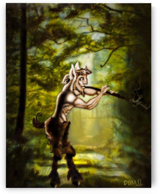 Toms Pan Final by David B Martin II