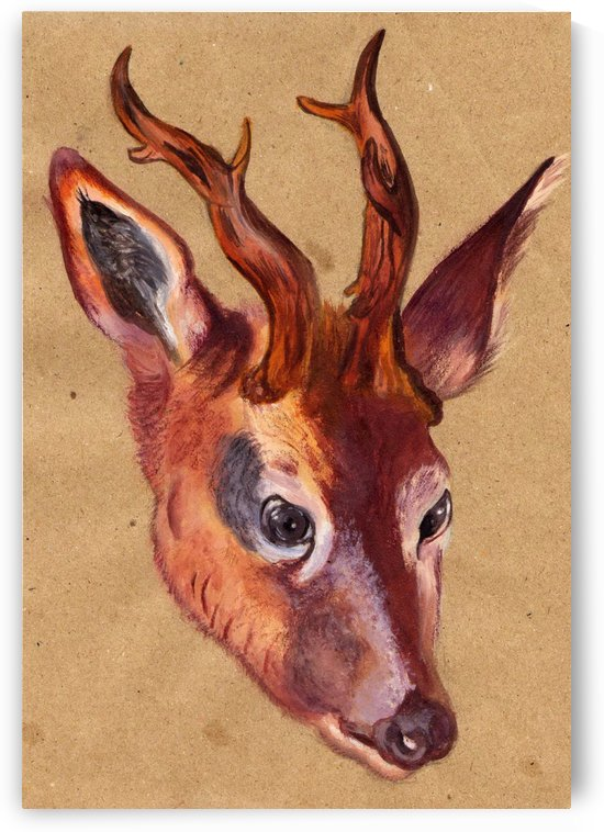 Stag deer by Albrecht Durer