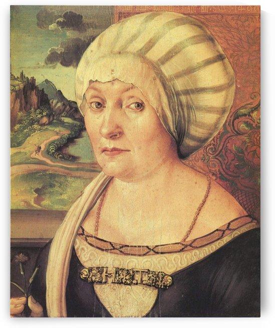 Portrait of Felicitas Tucher by Albrecht Durer