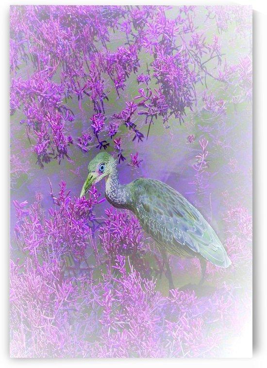 Purple Hideaway  by Ellen Barron O-Reilly