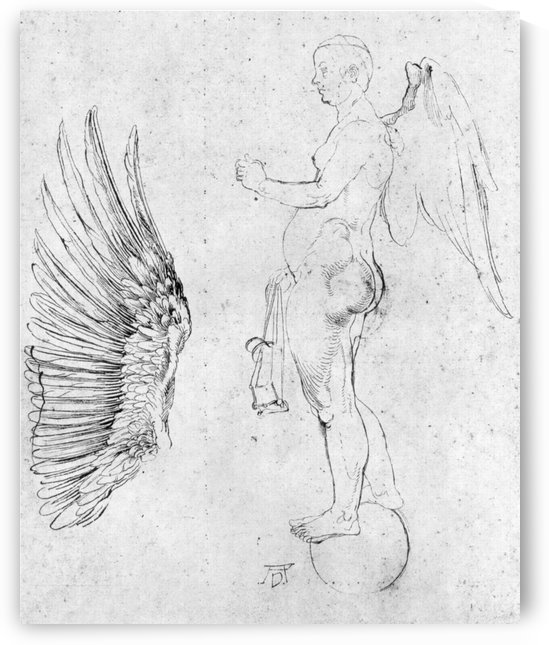 Study to a large fortune by Albrecht Durer