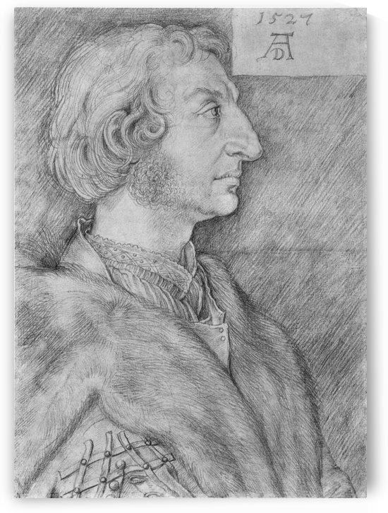 Portrait of Ulrich Starck by Albrecht Durer