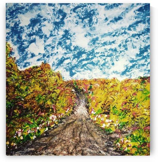 The Road Through  Fall  by djjf