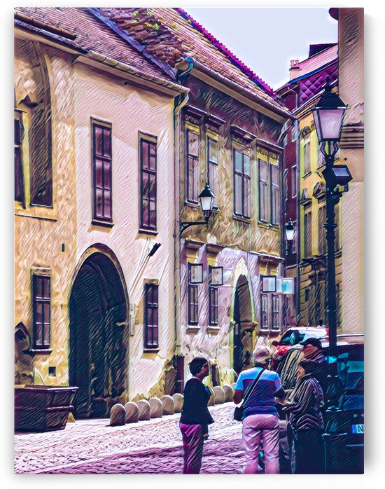 Houses of Sopron by Ferenc Lengyel