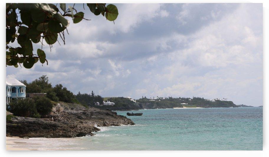 Bermuda Shores by Kathleen OConnor
