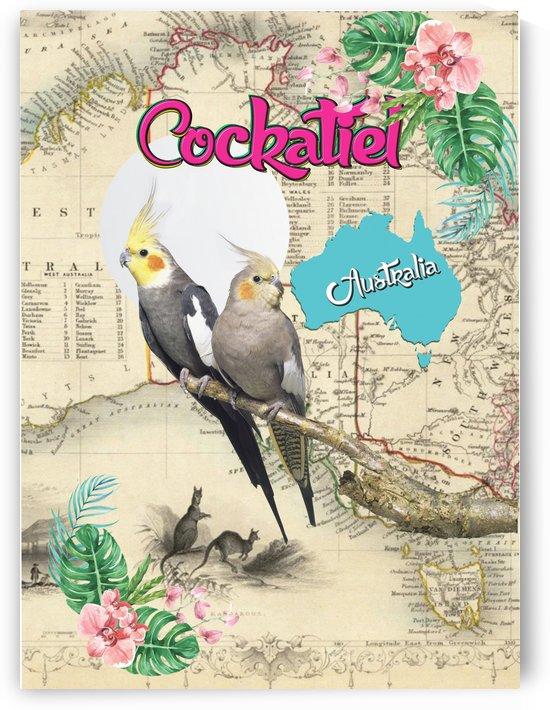 Cockatiel in Australia - Full Colors by Hernando Bressan