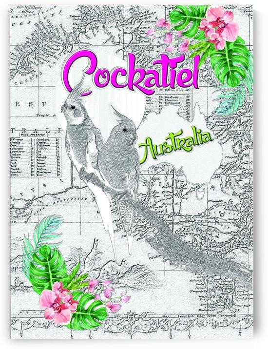 Cockatiel in Australia - Light by Hernando Bressan