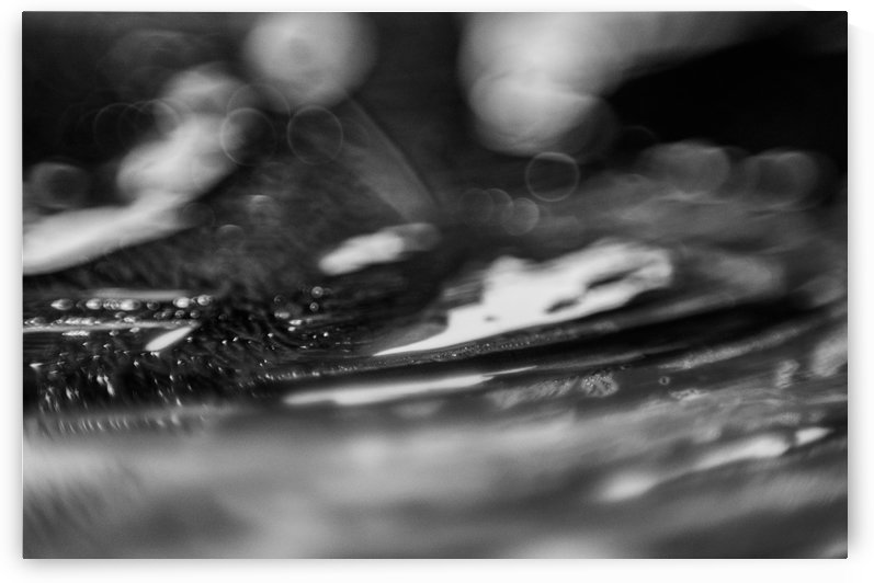 B&W Macro Paints 3 by Infinity Design and Photography