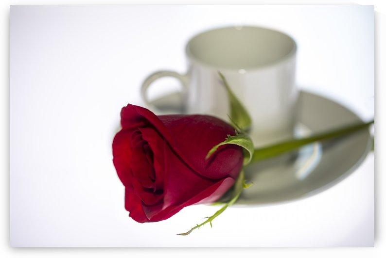 Coffee Love by Kaye
