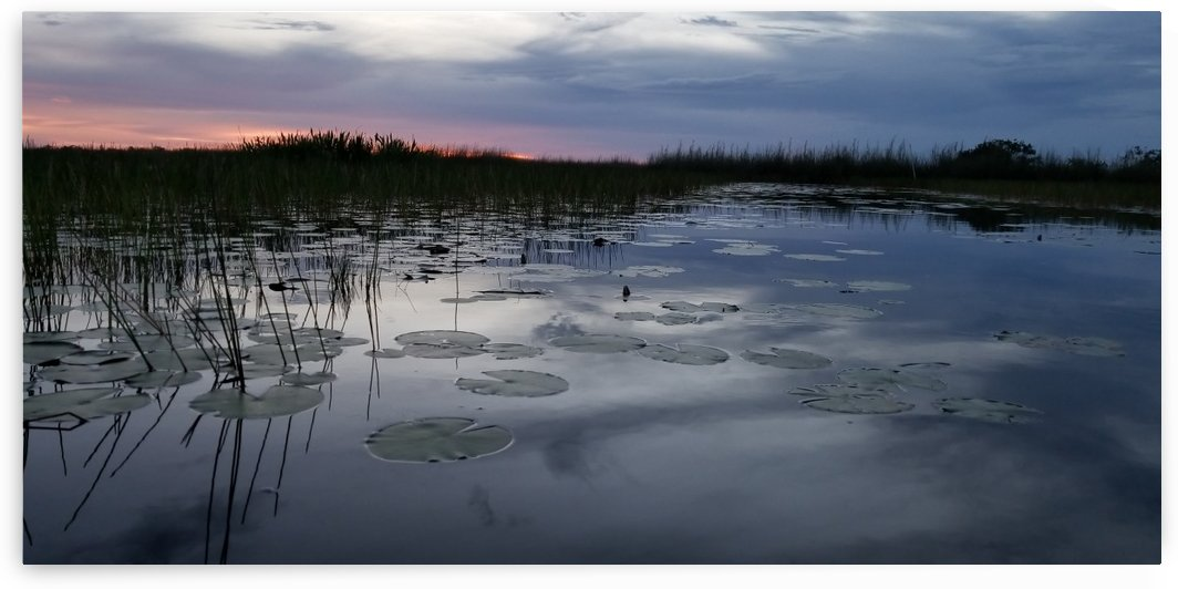 Sunset in Everglades by HappyDewDrop