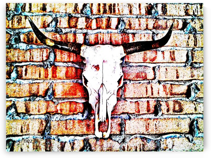 Longhorn by Efrain Montanez