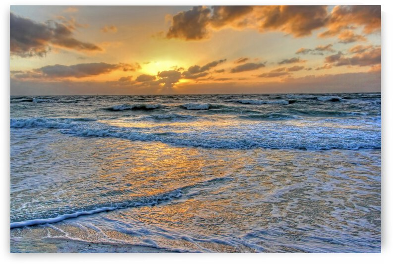 Restless by HH Photography of Florida