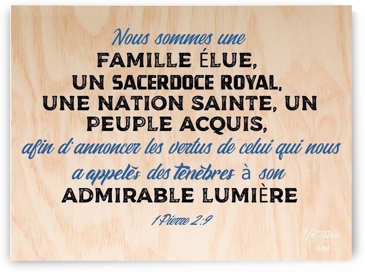 Famille élue by Rose Kélème
