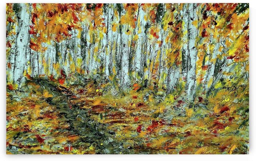 Walk In The Forest  by djjf