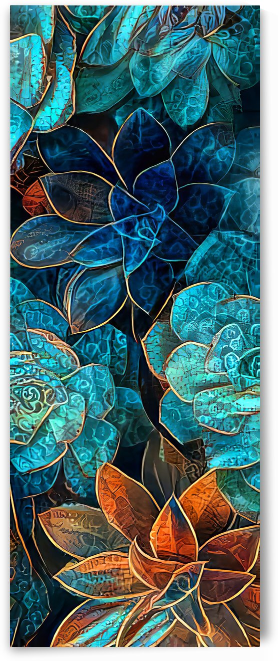 Colorful Garden Succulents by HH Photography of Florida