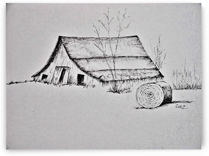Old Barn by Efrain Montanez
