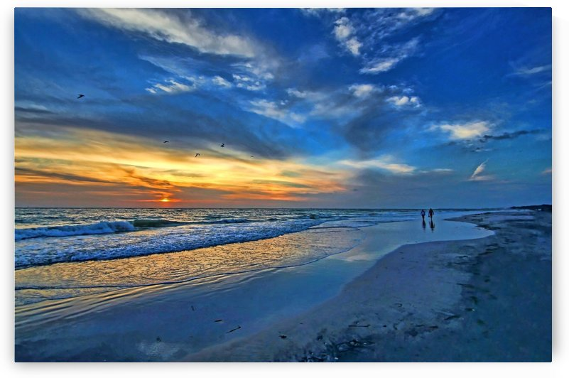 Moody Blues by HH Photography of Florida