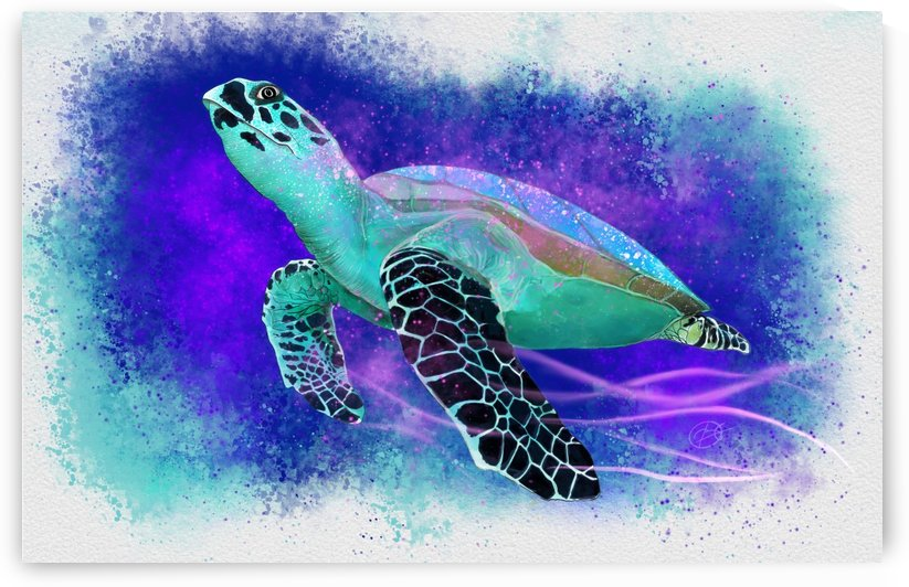 Splashed Water Turtle by George Bloise