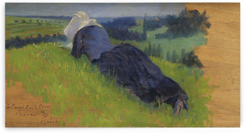 Peasant Woman Lying on the Grass by Henri Edmond Cross