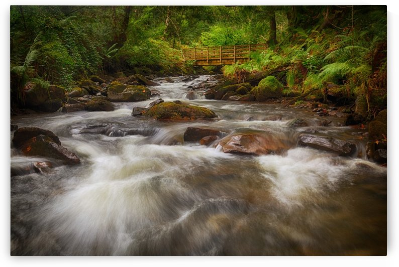 The wooden bridge over the river Melin by Leighton Collins