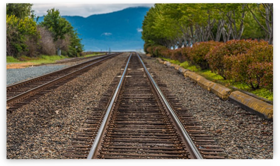 Tracks Toward Blue Mountains by Darryl Brooks