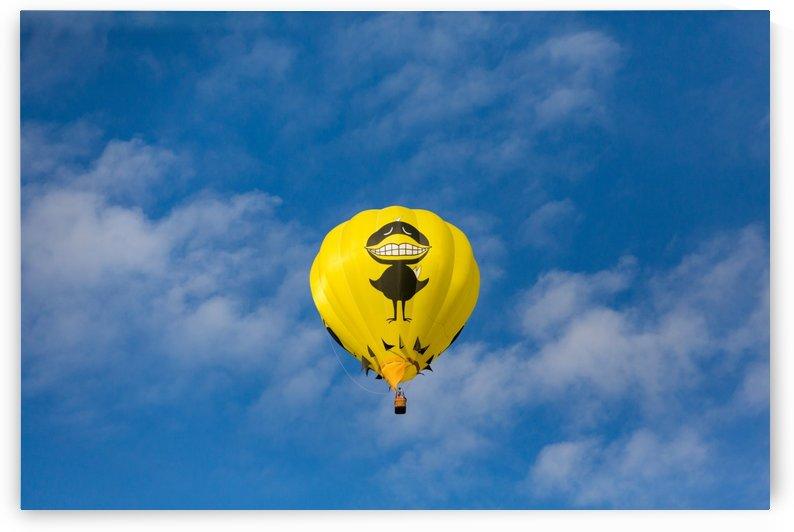Big Black Bird Balloon by Darryl Brooks