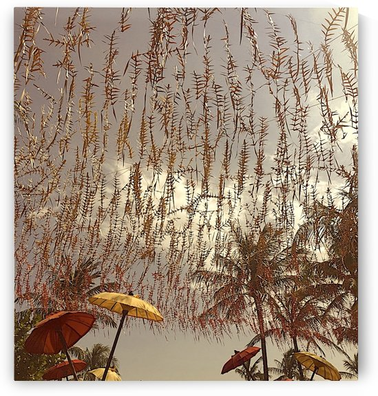 Umbrellas under the palm by AmilenaCollection