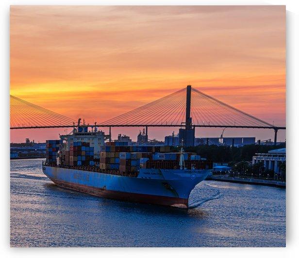 Maersk in Last Light by Darryl Brooks