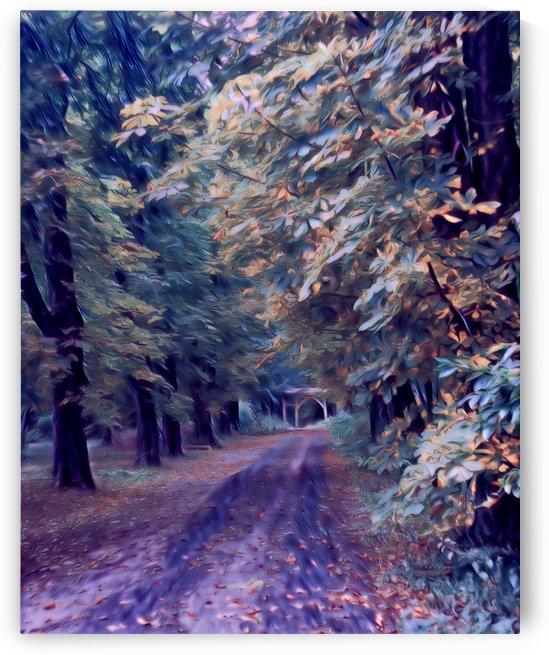 Forest Botanical Garden by Ferenc Lengyel