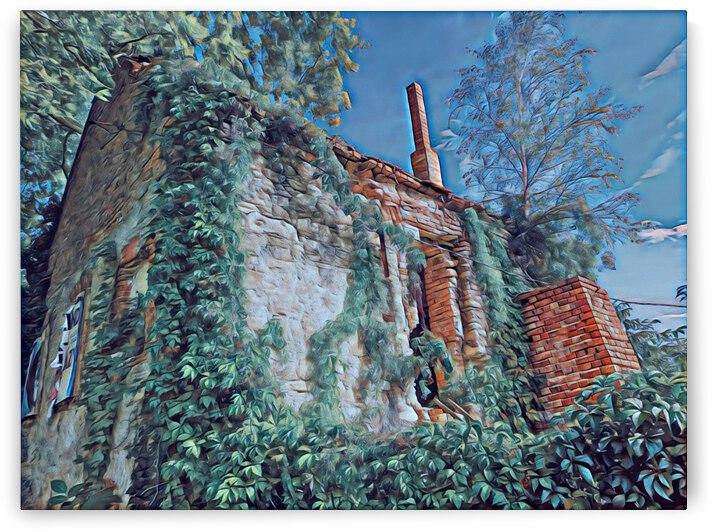 Steiger Mill by Ferenc Lengyel