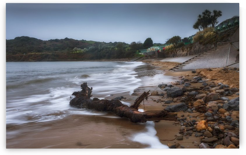 Driftwood at Langland Bay by Leighton Collins