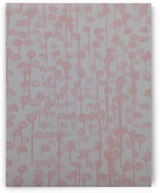 Pink petals by Sania Zehra