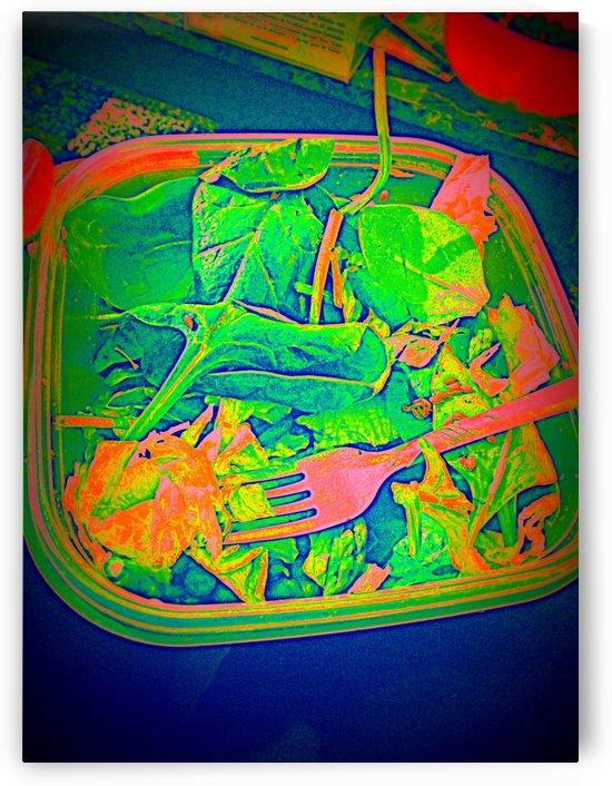 Salad by Sania Zehra