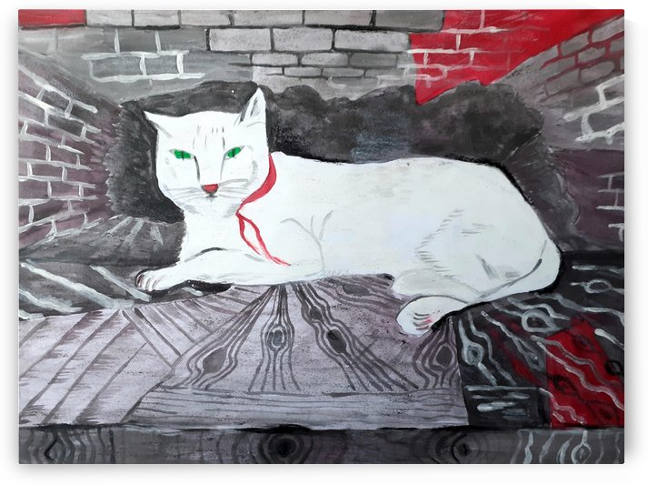 White cat by Maltez