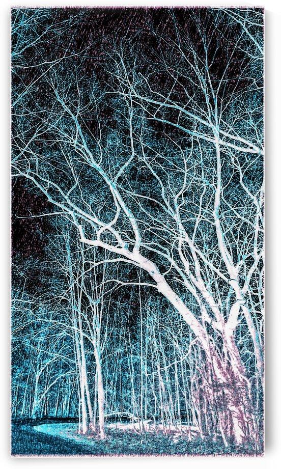 Art Trail of Blueish Green by Jeremy Lyman