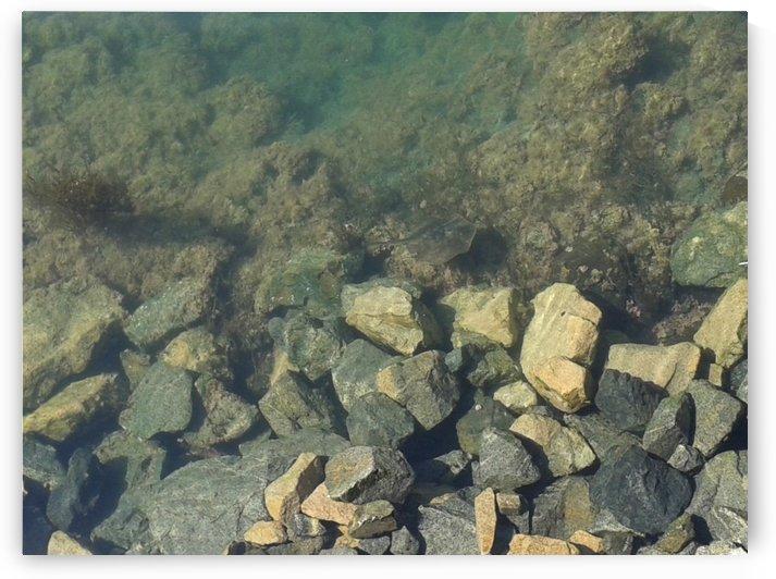 Underwater  by RollaD