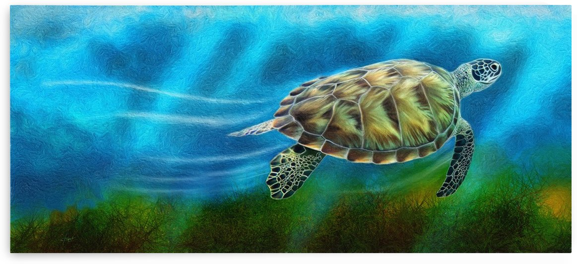 TURTLE IN THE OCEAN by George Bloise