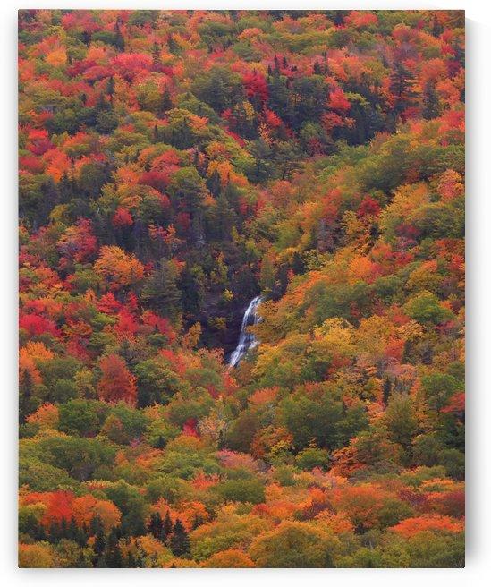 Beulach Ban Falls by DaveyandSky